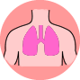 week-four-lungs-img.png